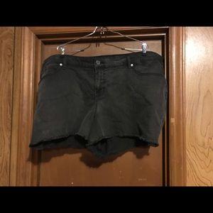 Torrid black shorts